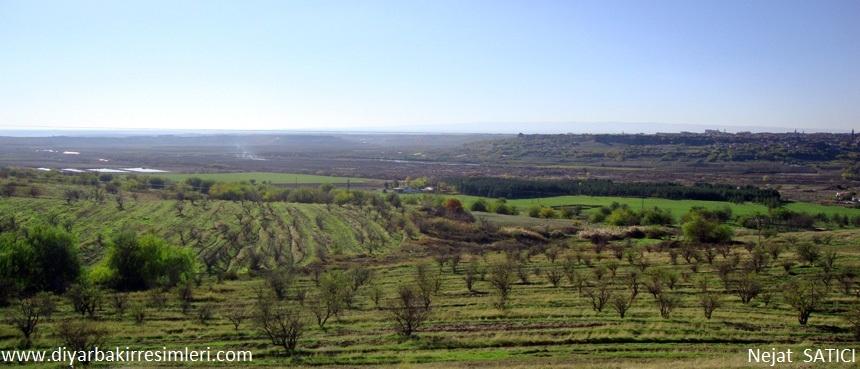 diyarbakir_manzarasi21-fot.nejat_satici.jpg